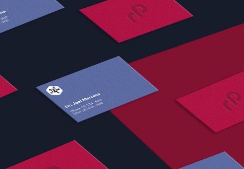 EXO Servicios Diseño Branding en México